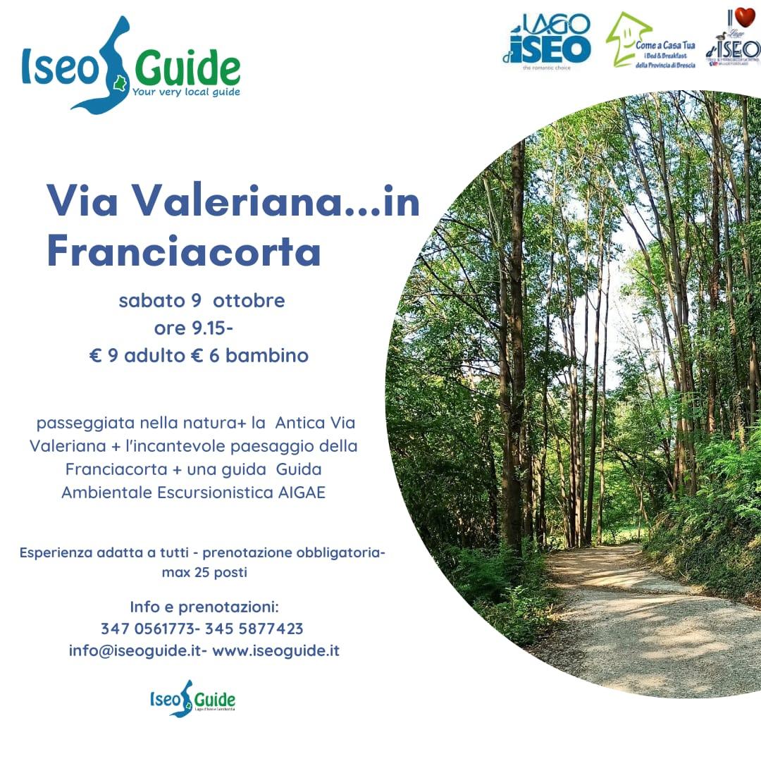 Via valeriana in franciacorta 9 10